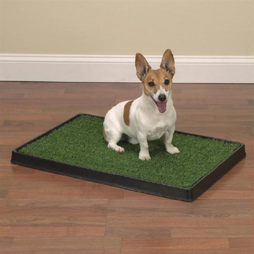 Clean Go Pet Indoor Dog Potty