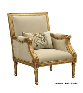 Acme 50838 Daesha Antique Gold Fabric Finish Chair with Pillows