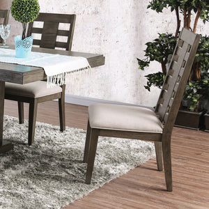 Furniture of America Jayden Transitional Gray Dining Chair Set of 2
