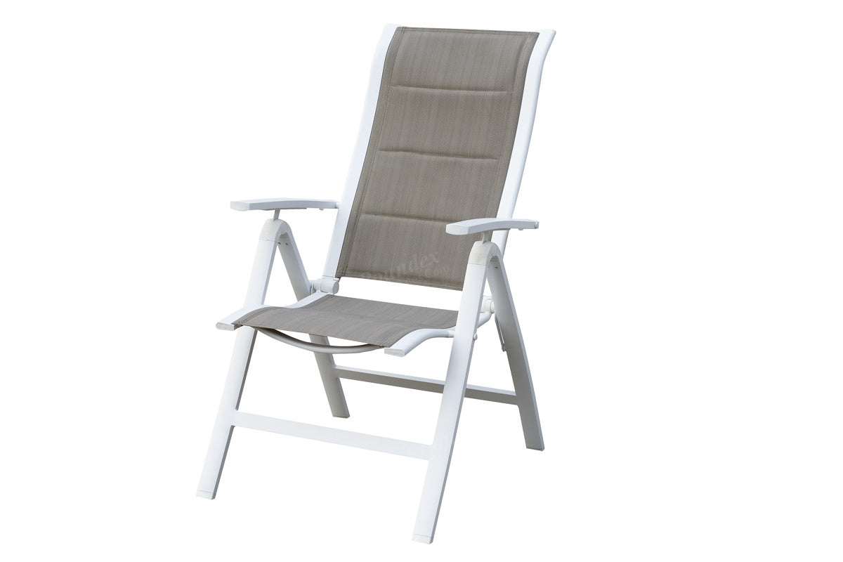 Poundex Natural Aluminum Finish 2 Piece Outdoor Dining Chair