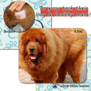 Fur Patch Pet Hair Regrowth Spray