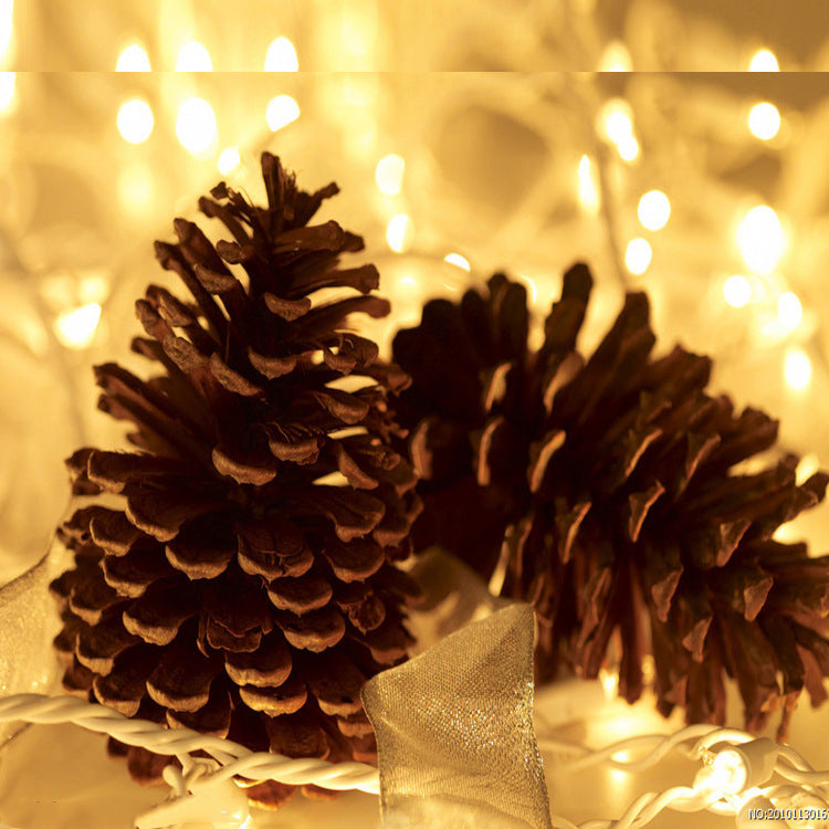 10 pcs Christmas Decoration Ornaments Natural Pine Cones