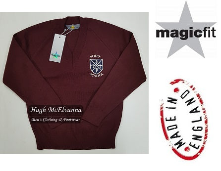 Foley V-Neck by MagicFit - Hugh McElvanna Menswear