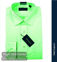 Peter England Pride Mint Long Sleeve Shirt Style: PE9010