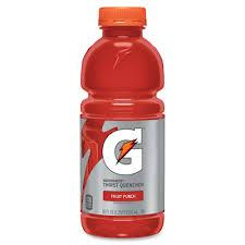 Gatorade Fruit Punch 20oz. bottles 24 per case