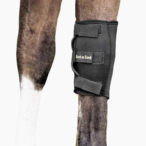 Therapeutic Horse Knee Boot