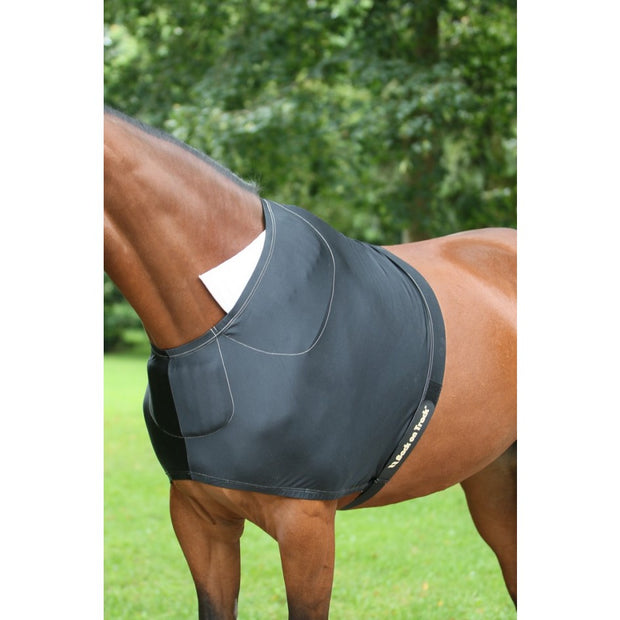 Therapeutic Horse Shoulder Guard