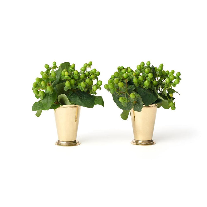 Social Studies Florals Fresh Green Hypericum Berries