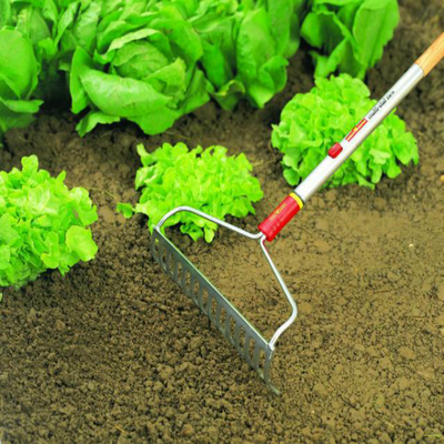 WOLF-Garten Bow Rake with long handle - BlueStone Garden