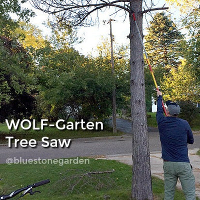 BlueStoneGarden - WOLF-Garten - Tree Saw - SAWPC370MS