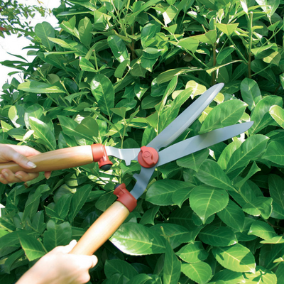 Gardening Tools - WOLF-Garten Tree Shrub Pruning Kit - BlueStoneGarden