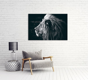 Picture Glass Lion 100x150cm