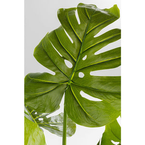 Deco Plant Monstera 175cm