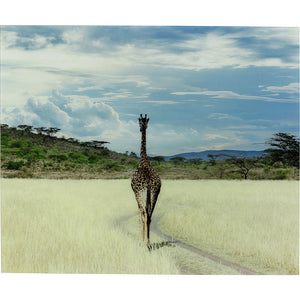 Picture Glass Savanne Giraffe 100x120cm