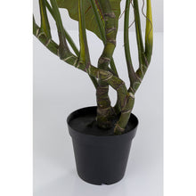 Load image into Gallery viewer, Deco Plant Taro 180cm