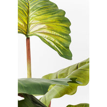 Load image into Gallery viewer, Deco Plant Rainforest Green 160cm