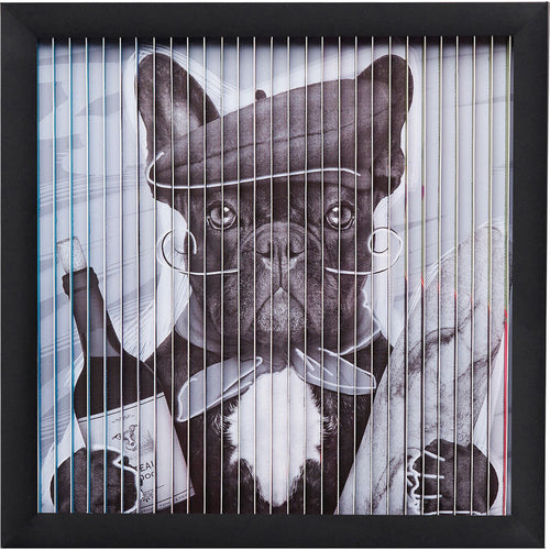 Picture Frame Art 3D French Dog 43x43cm