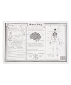 Human Body & Periodic Table Activity Place Mat Set