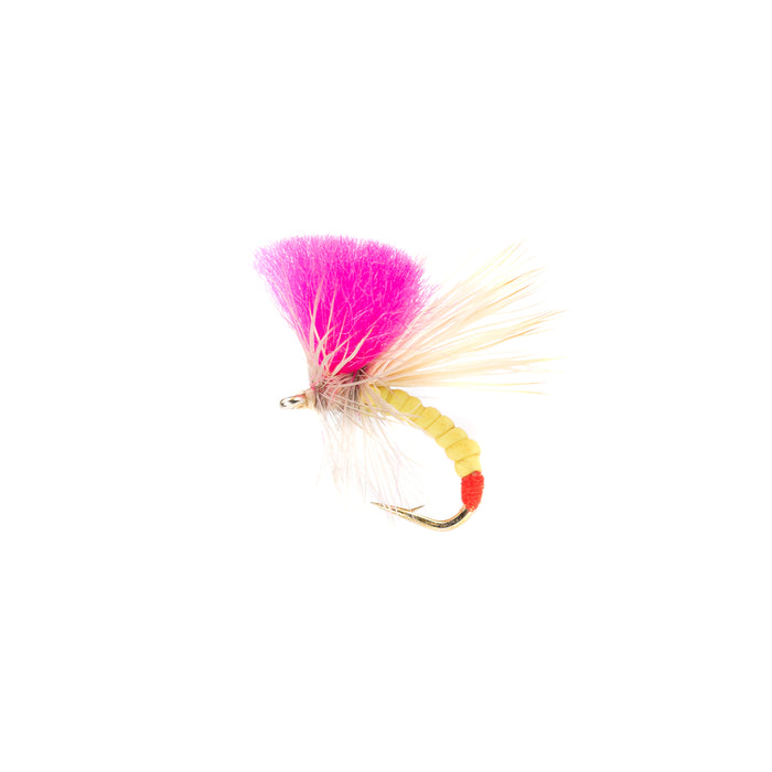 Clown Shoe Sally Dry Fly