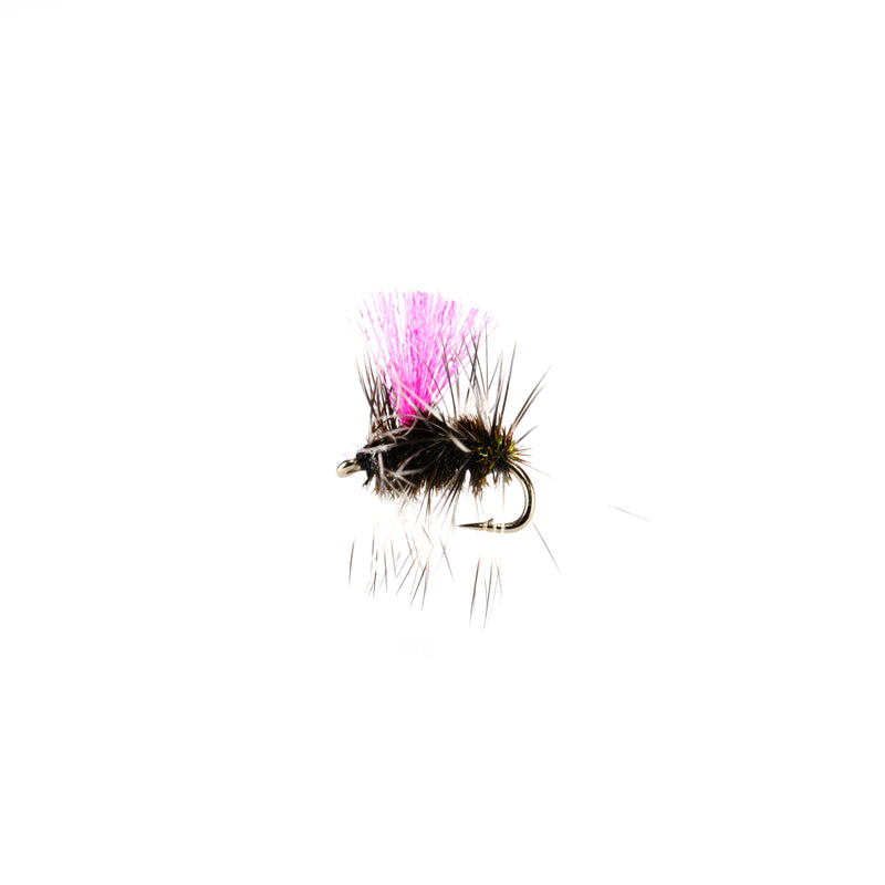 Griffiths Gnat Dry Fly