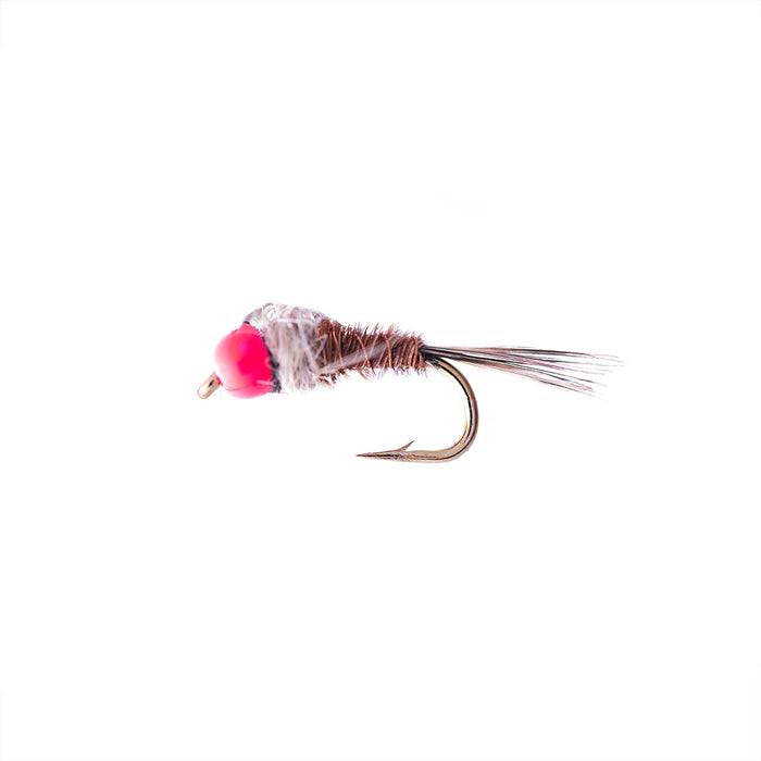 Hot Head Pheasant Tail Fishing Fly