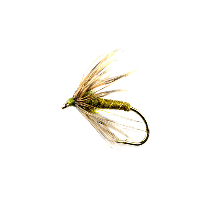 New Trick Soft Hackle Olive