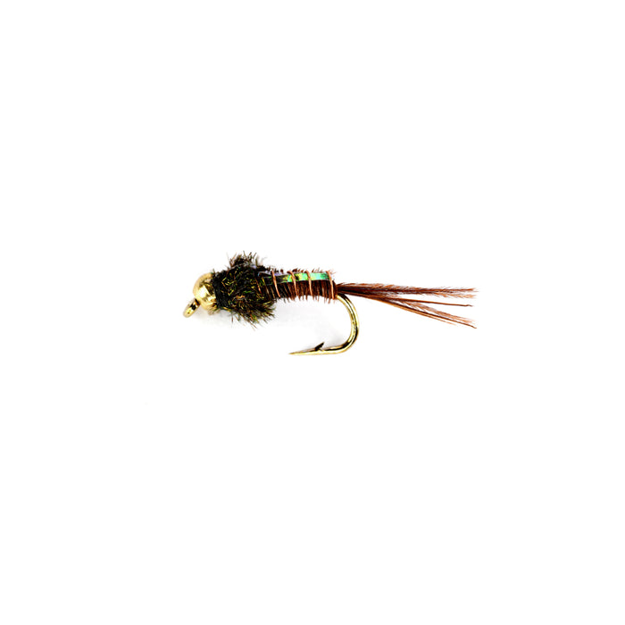 Pheasant Tail Flash Back