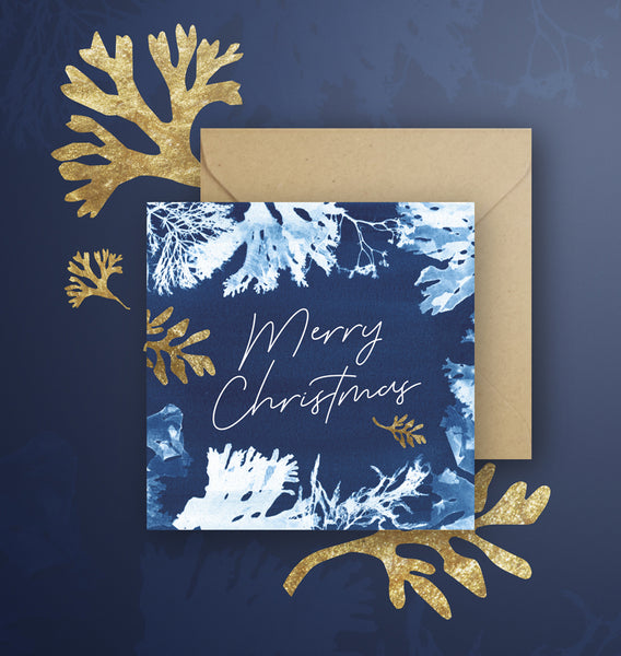 Merry Christmas Cyanotype, Seaweed Square Greetings Card, White and Blue Sea Design. Blank Inside With Kraft Envelopes. Individually or as Sets.
