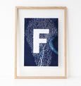 Sea Fan Monogram Print