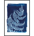 Cyanotype fern print made in Cornwall by Paper Birch