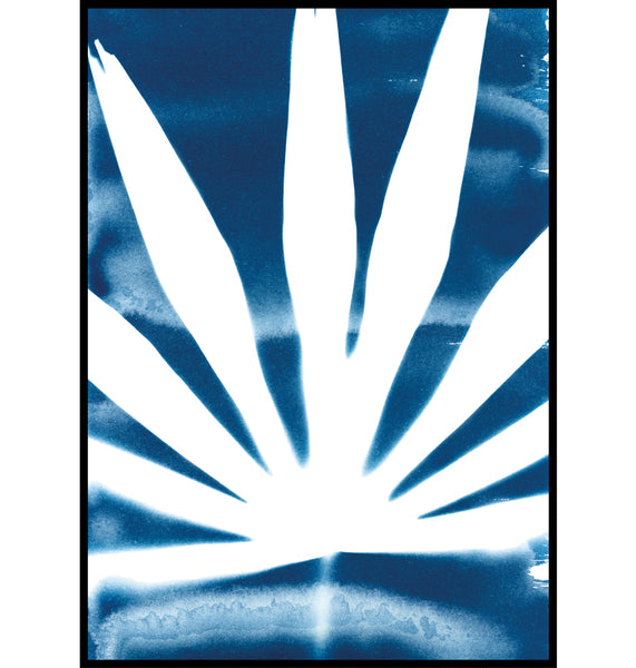 Palm Leaf Falmouth Cyanotype Botanical Wall Art Print Cornwall
