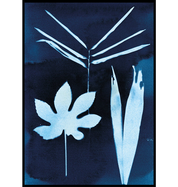 Paper Birch Cyanotype tropical palm, fig and bamboo print