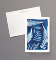 British Ferns - Pack of 5 postcards featuring cyanotype fern prints