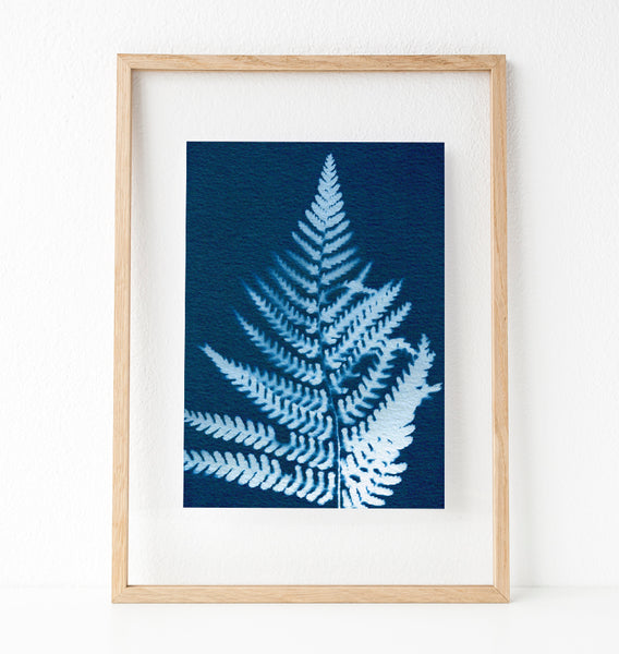 Fern Botanical Art Print