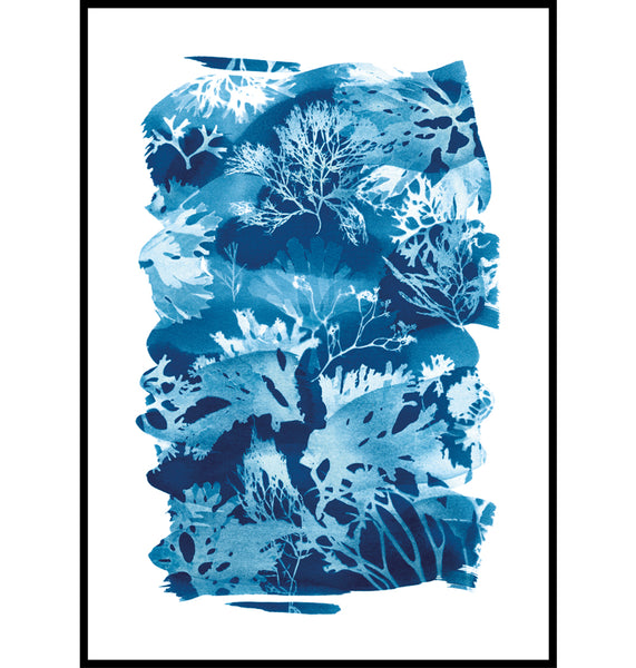 Cyanotype Seaweed Tideline wall art Print, made in Cornwall