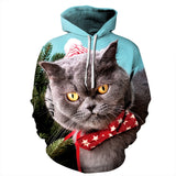 Mens Hoodies 3D Graphic Printed Christmas Totoro Pullover