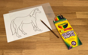 Horses and Mammals Kit