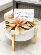 Cactus Lounge Boutique Physical Gift Card - $25 - Cactus Lounge Boutique