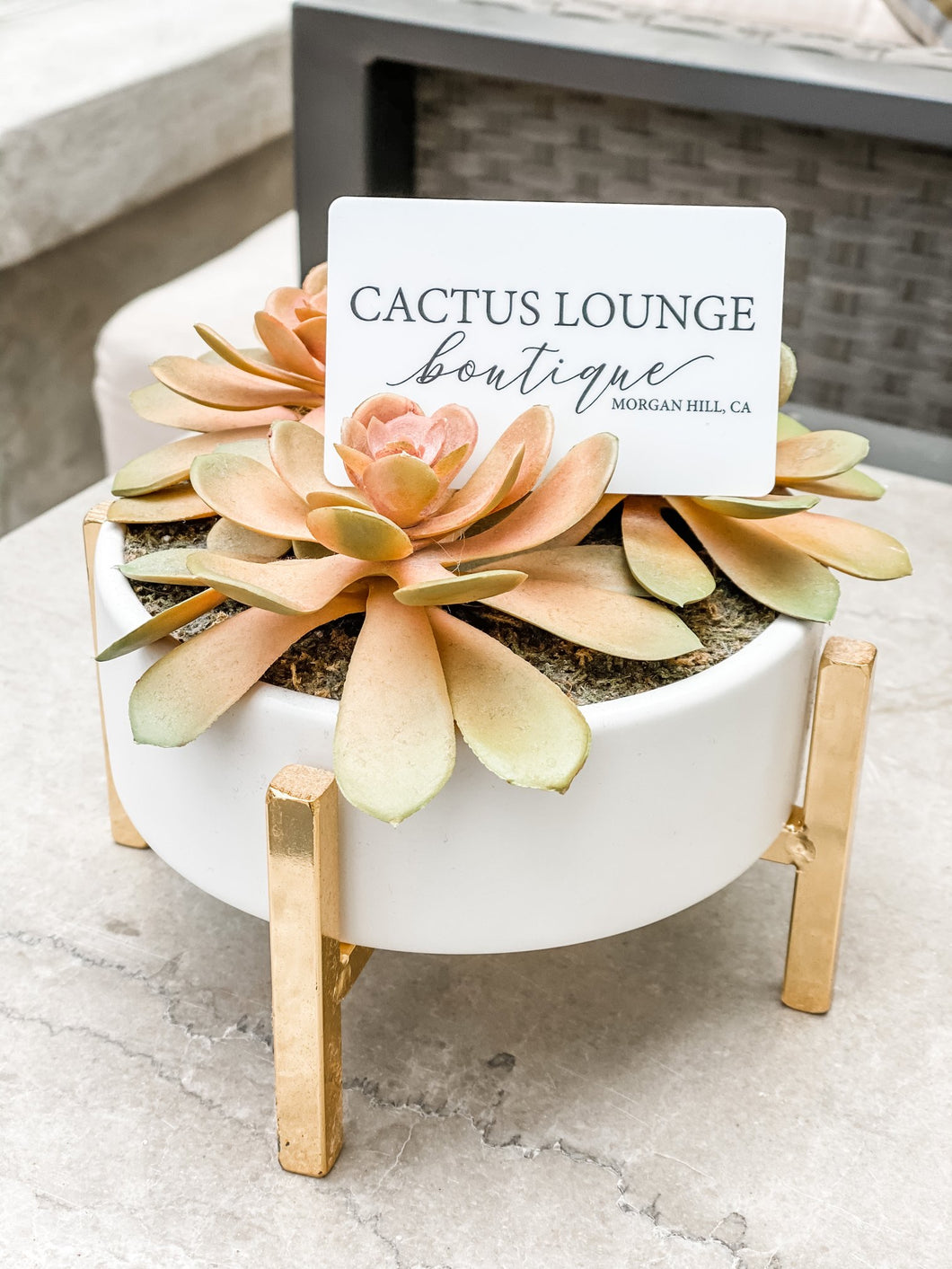 Cactus Lounge Boutique Physical Gift Card - $50 - Cactus Lounge Boutique
