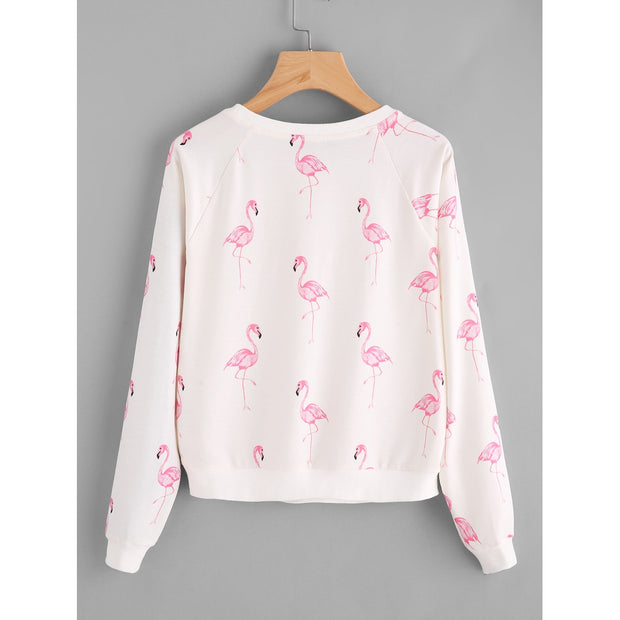 Allover Flamingo Print Raglan Sleeve Sweatshirt