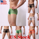 Mens Sheer Mesh Sexy Panties Underwear Boxer Trunks Shorts See Through Knickers