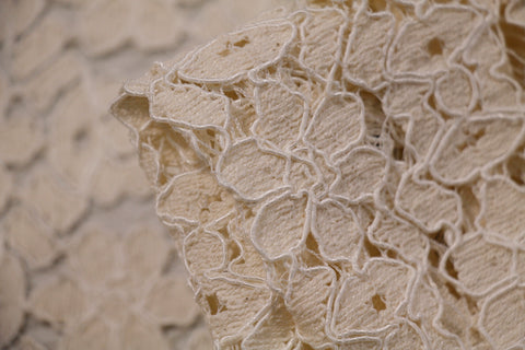 Cutlined Flowered Lace