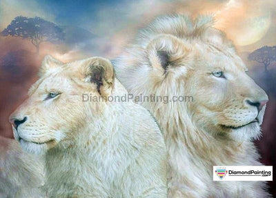 Angry Lions 5D Diy Diamond Painting Kit