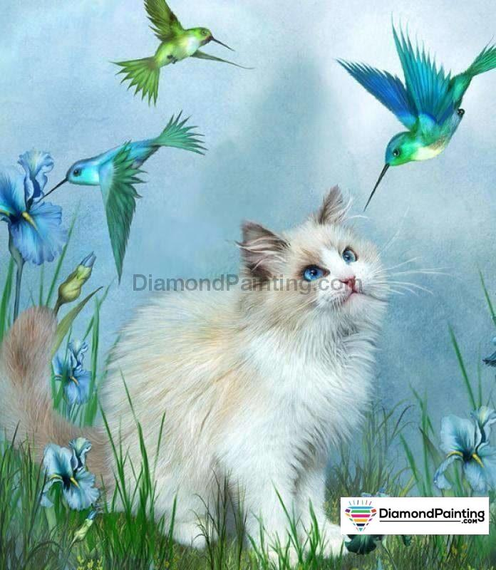 Birds and Cat Playing Diamond Painting Kit Free Diamond Painting