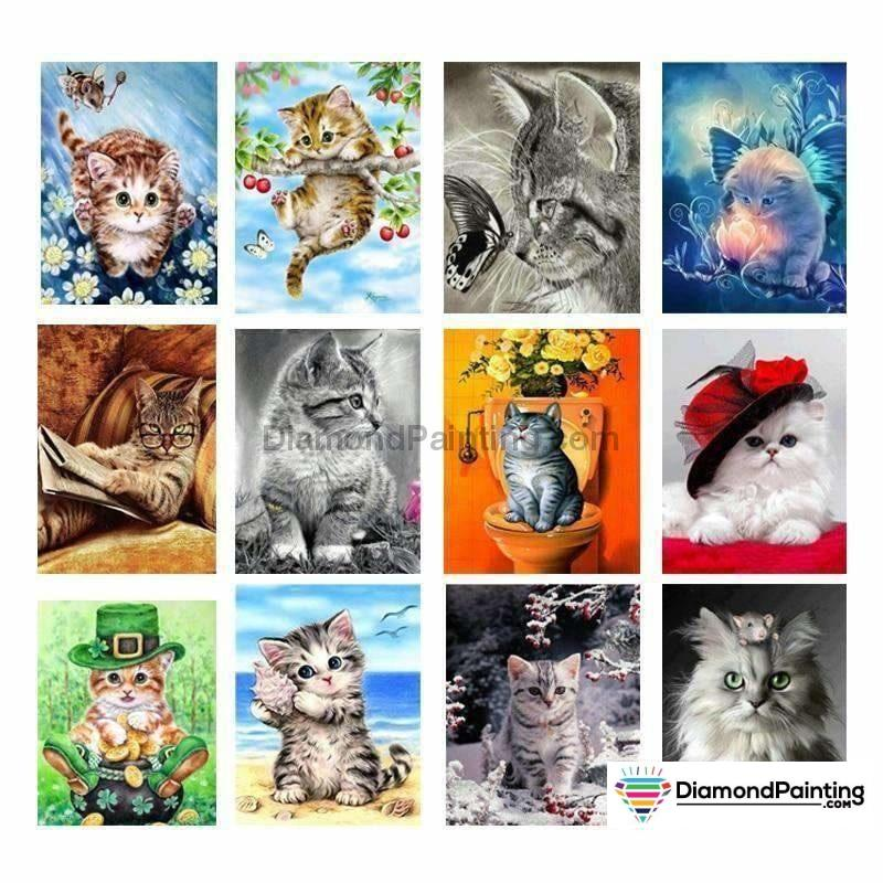 Cat Lovers Collection Painting With Diamonds Kit