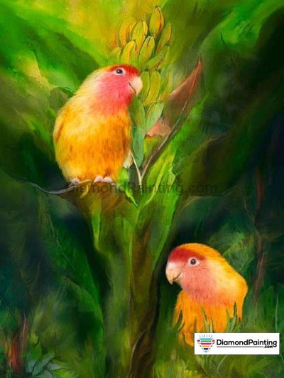 Charm Birds Diy Diamond Painting Kit 20X25Cm