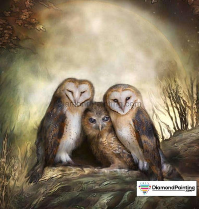 Chilling Owls 5D Diamond Art Kit 20X20Cm