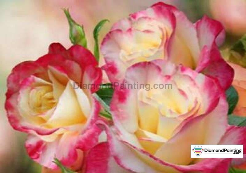Colors of Fun Diamond Painting Lovers Kits for Adults Free Diamond Painting Open Flower 15x20cm