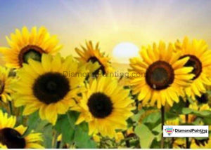 Colors of Fun Diamond Painting Lovers Kits for Adults Free Diamond Painting Sunflower Surprise 20x25cm