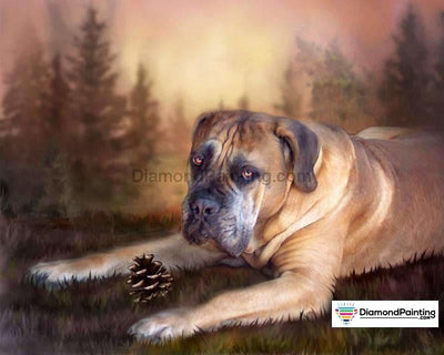 Lonely Dog Diy Diamond Painting Kit 20X25Cm